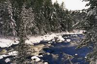 Ouareau River And Snow Covered Evergreen Trees In