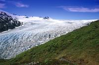 Exit Glacier Part of Harding Ice Field KP AK Summe