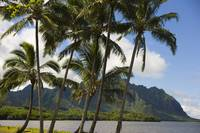 Hawaii, Oahu, Windward, Waikane Beach Park, Kualoa