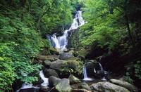 Torc Waterfall, Killarney National Park, County Ke