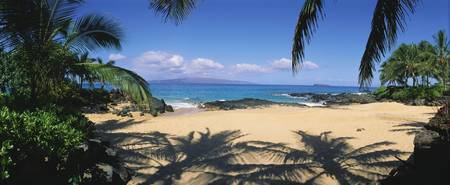Hawaii, Maui, Makena Small Secluded Beach Palm Sh