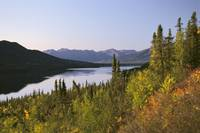 Selby Lake Brooks Range Fall Scenic Arctic AK Gate