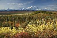 Scenic view of Mt. McKinley and the Alaska Range w