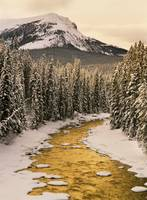 Maligne River In Winter, Jasper National Park, Alb