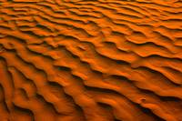 Desert-Like Conditions Of The Great Sand Hills Of