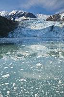 Chunks of melted ice float in water near glacier