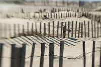 Slats Of Wooden Fence Throwing Shadows On Beach