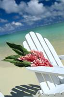 Close-Up Of White Beach Chair With Bunch Of Pink G
