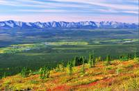 View From Ogilvie Ridge Lookout, Dempster Highway,