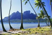 French Polynesia, Tahiti, Bora Bora Coast With Pal