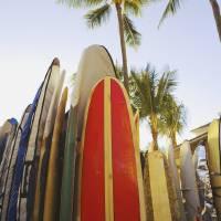 """Hawaii, Oahu, Waikiki,Colorful Surfboards In Surfb"" by DesignPics"