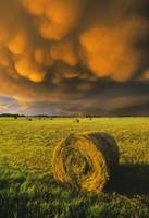 Haybale And Storm Clouds Alberta, Canada