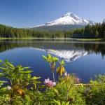 """Reflection Of Mount Hood In Trillium Lake In The O"" by DesignPics"