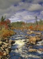Rocky Brook And Fall Colours, Newfoundland, Canada