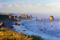 Fog Covers Rock Formations Along The Coast At Band