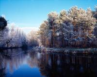Lagan Meadows During Winter, Belfast, County Antri