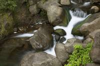 Hawaii, Maui, Iao River Valley Waterfall