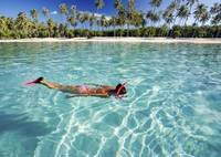 French Polynesia, Moorea, Woman Free Diving In Tur