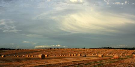 County Cork, Ireland, Hay Bales After The Harvest
