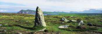 Vale Of Clara Nature Reserve, Co Wicklow, Ireland