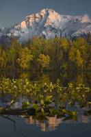 Scenic view of Pioneer Peak reflecting in Echo Lak