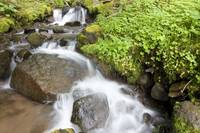 Water Cascading Over Rocks, Mount Hood National Fo