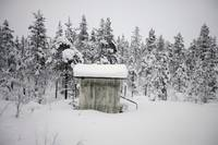 Snow Covered Cabin By Forest, Sweden
