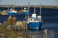 Crab Boats, Change Islands, Newfoundland