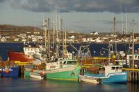 Crab Fishing Boats, Fogo Island, Newfoundland