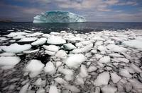 Floating Ice Shattered From Iceberg, Newfoundland