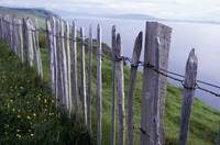 Wooden Fence On Hillside By Sea