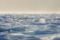 Ice Shards On The North Shores Of Lake Superior, M