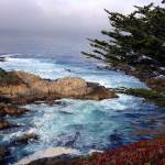 Coastal view from Carmel Highlands by Eric G
