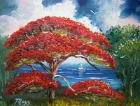 Red Royal Poinciana Tree and Sailboat