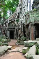 Doorway and Trees TaProhm Cambodia