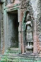 Doorway and Wall carvings at Ta Prohm Cambodia