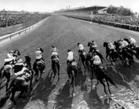 Seattle Slew Horse Racing #01