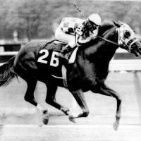 """Secretariat Vintage Horse Racing 12"" by RetroImagesArchive"