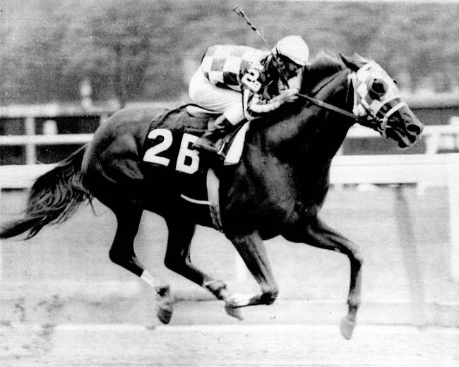 Secretariat vintage horse racing 12 by retroimagesarchive