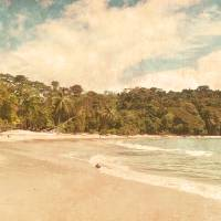 Costa Rican Coast Art Prints & Posters by Steven Verlander