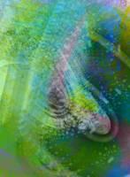 Vast: Sprinkle by Adwen Creative