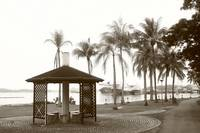 City Singapore in monochrome - Tropic Coconut