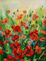 red poppy, oil painting on canvas