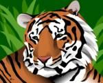 Tiger by Pixel Paint Studio