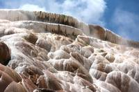 Steamy Mammoth Hot Springs by Carol Groenen