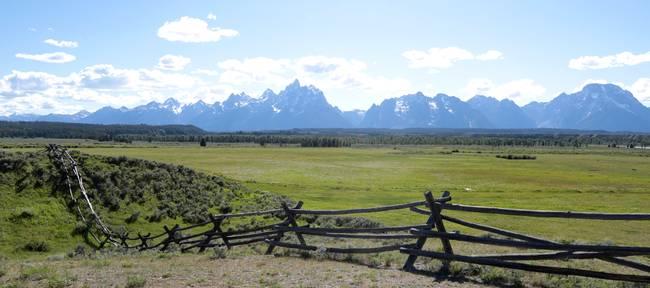 Teton Panorama with Fence
