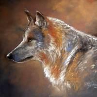 LONE WOLF PASTEL by Marcia Baldwin