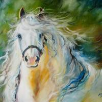 CLOUD the White Andalusian by Marcia Baldwin
