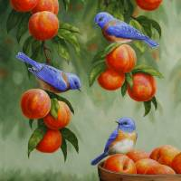 """""""Bluebirds and Peaches"""" by csforest"""