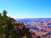 Grand Canyon South Rim in Dynamic Filter
